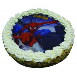 Entremets Spiderman Fondant 2 Chocolats