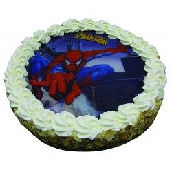 Entremets Spiderman Fondant 2 Chocolats